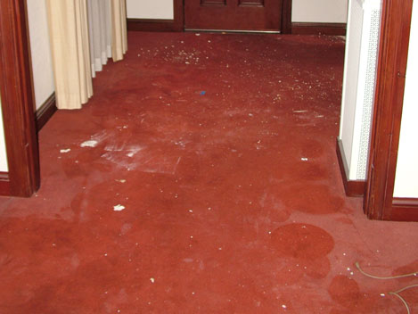 Lombardi's Carpets saves the filthiest carpets!